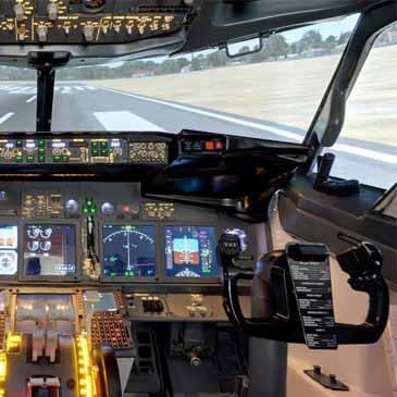 simulateur de vol enterrement de vie de garçon paris