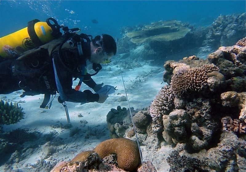 plongée sous marine enterrement de vie de garçon